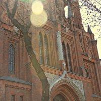 Католическая Церковь Пресвятого Сердца Иисуса :: Юлия Суханова