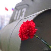 9 мая :: Олег Огорельцев