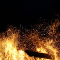 Огонь :: Евгения Беденко