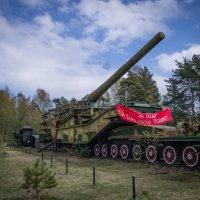 большая пушка :: Vasiliy V. Rechevskiy