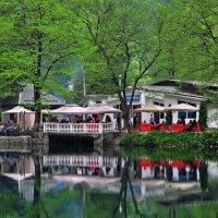 На Голубом озере :: lyuda Karpova