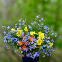 Дачный майский букетик :: Angelika Faustova