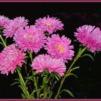 Цветы на праздник :: юрий Амосов