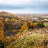 Осенний этюд... красивый... :: Александр Никитинский