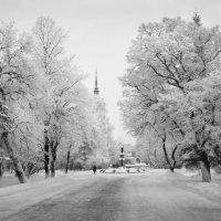 Дыхание зимы :: Валерий Талашов