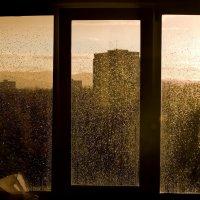 рыжий дождь :: Евгений Золотухин