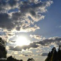 Солнце. Небо :: Алина Чувахина