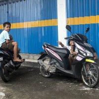 дети Бали :: Alexander Romanov (Roalan Photos)