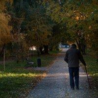 Осенние прогулки 3 :: Евгений Барабанщиков