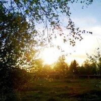 На закате дня :: Катя Бокова