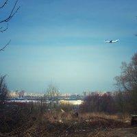Вид с Пулковских высот :: Кристина Двойникова
