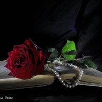 Роза :: Инна Кирвякова