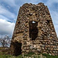 Волковицкая башня :: Яна К
