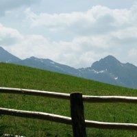Альпийские луга :: Александр