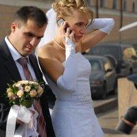 Свадебные заботы :: Цветков Виктор Васильевич