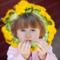 Весеннее солнышко :: Victoria Bryfar