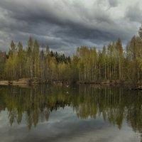 После дождичка в чеверг... :: Ljudmila Korotkova