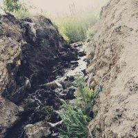 Ручей чистой воды :: Виктория Гончаренко