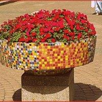 Клумба цветов :: vadim