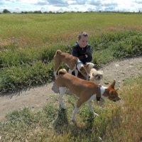Собаки, которые нас выбирают... :: Дядюшка Джо