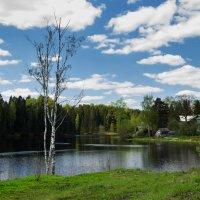 Весна в деревне :: Наталья Ерёменко