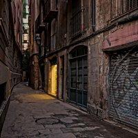 Таинственная дверь :: Лидия Цапко
