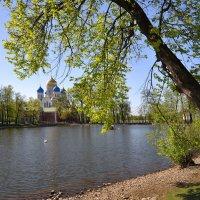 Лишь только здесь способны мы услышать всю красоту небесной тишины :: Ирина Данилова