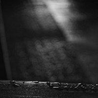 Магия после дождя :: Антон Довбня