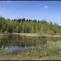 Чёрное озеро (2) :: DimCo ©
