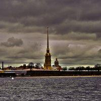 вид на Петропавловскую крепость :: Наталья Крюкова