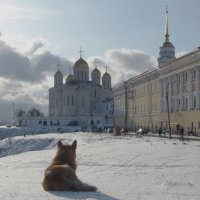 Красота! :: Владимир Шошин