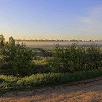 Утро туманное :: Сергей Израилев