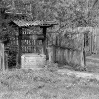 Жизнь деревенская :: Алексей Масалов
