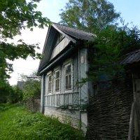 Домик в деревне :: Наталья Левина