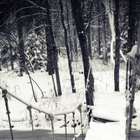 Навесной мост :: Кристина Щукина
