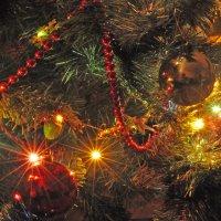 Новогодняя ёлка :: Маргарита Бабушкина