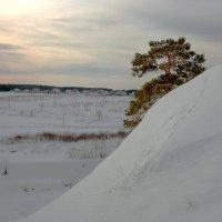 село Слобода :: Александр Коликов