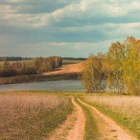 Пейзаж :: Daria Bozakina