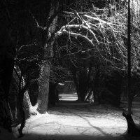 Зимний вечер :: Олег Хатефов