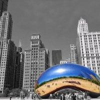 Chicago :: Gene Brumer