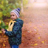 Осень :: Оксана Акиньшина