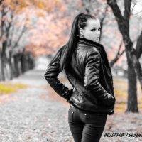 Осенняя аллея :: Андрей Гнездилов