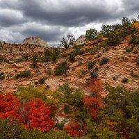 Осень в горах :: Gregory Regelman