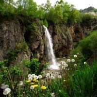 Медовый водопад :: Marina Timoveewa