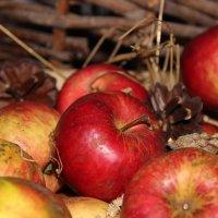 рубиновые яблоки :: Ксения Харченко