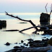 Загадочное море :: Светлана Кудряшова