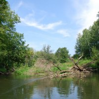 На реке :: Алексей Цыплаков