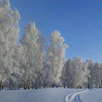 Зимняя панорама :: Николай Мальцев