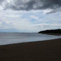 Финский залив :: Алексей Кудрявцев