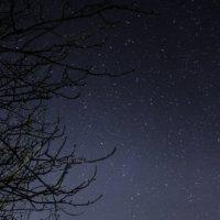 Ночь и звезды :: Олег Волков